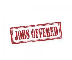 Job Offer For Carless Female Who Likes Giving BJ's