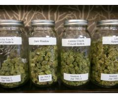 Best Weed in the area! 2027693498